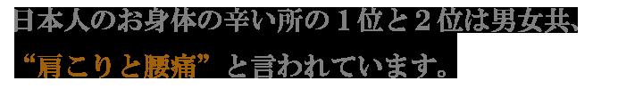 日本人のお身体の辛い所の1位と2位は男女共、肩こりと腰痛と言われています。